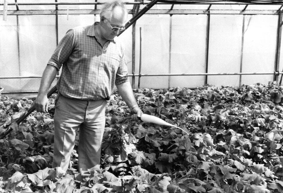 Berstecher AG Willy Beerstecher 1974