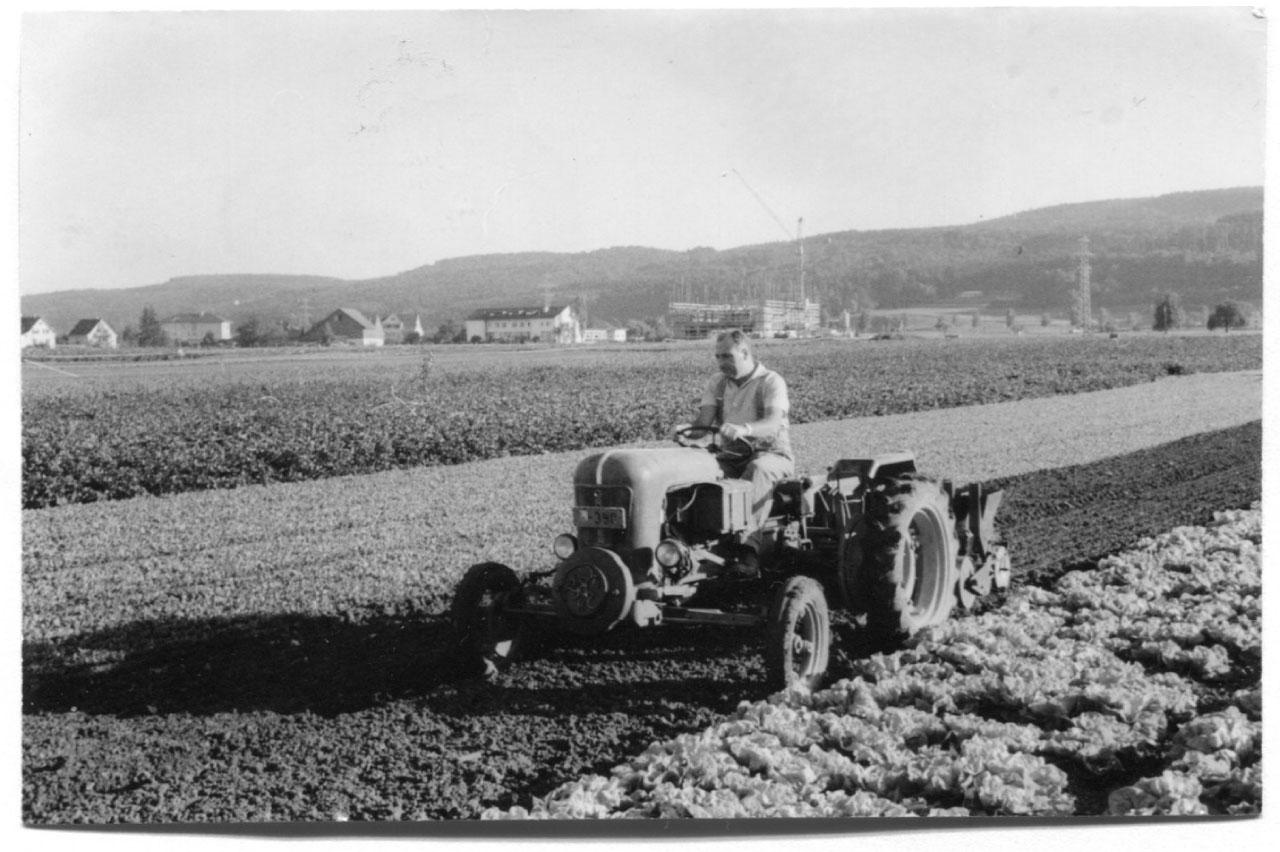 Beerstecher AG Traktor Grunder mit 12 PS