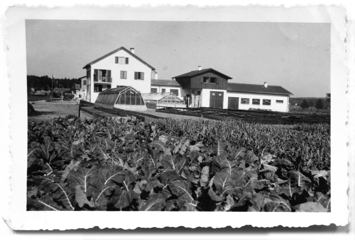 Beerstecher AG Haus mit Anbau